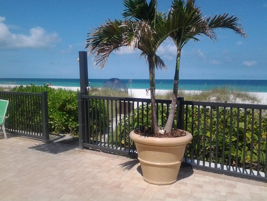 Belleair Beach Club : Walkway to beach