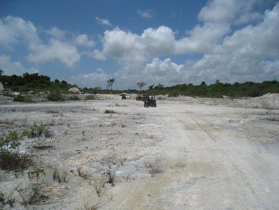 Parc écologique Indigenous Eyes : Lunar like lansdcape: limestone