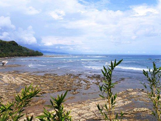 La Parcela: ocean view
