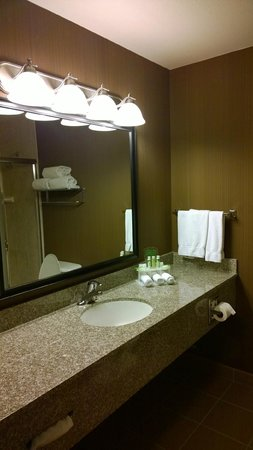 Holiday Inn Express Douglas: bathroom