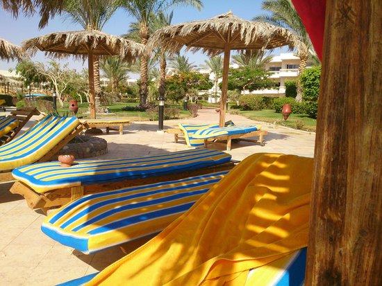 Hilton Hurghada Long Beach Resort: Новые матрасы у бассейна