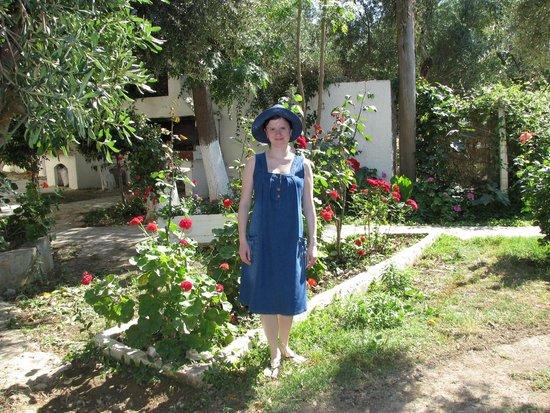 Villa Drossia: In the yard