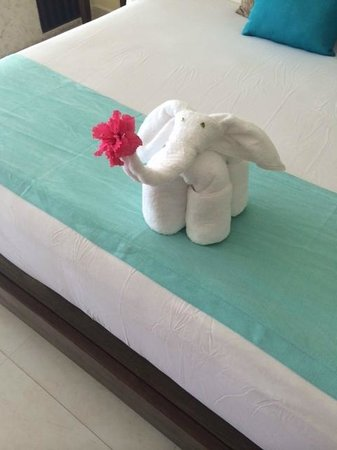 Azul Beach Resort Sensatori Mexico : our towel elephant