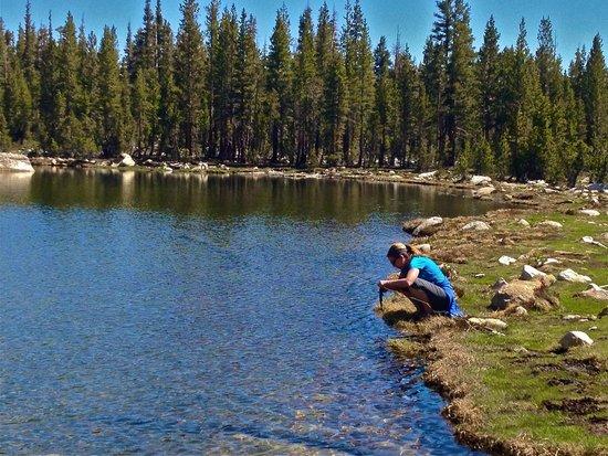 Yosemite Family Adventures: Brooke Trout Yosemite Elizabeth lake