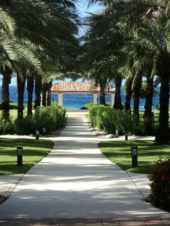Santa Barbara Beach & Golf Resort, Curacao : Our view