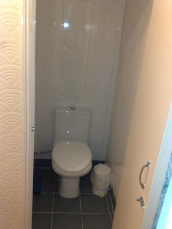 Falcon Hotel : toilet of room 12A