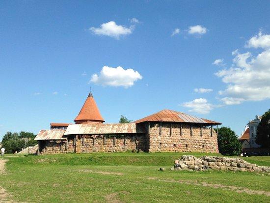Kaunas Castle : Castle
