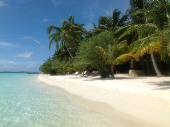 Kurumba Maldives: Пляж