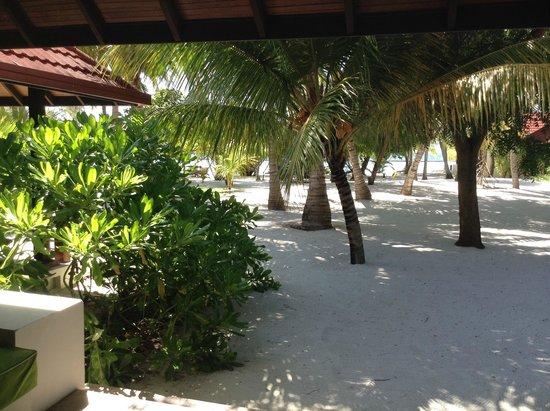 Kurumba Maldives: Вид из бунгало