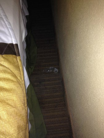 Extended Stay America - Chicago - Naperville - East: Another shot of the icky used condom.