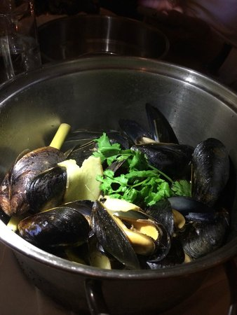 Flex Mussels - 13th Street