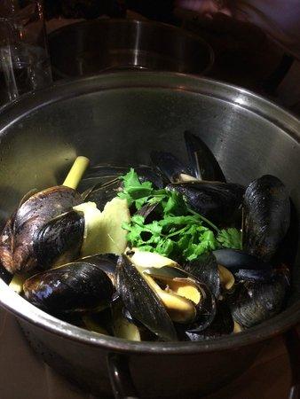 Flex Mussels - 13th Street : thai style mussels
