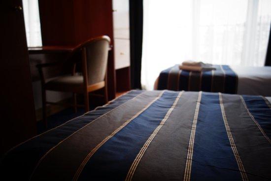 Hotel Midi-Zuid: Les Twins