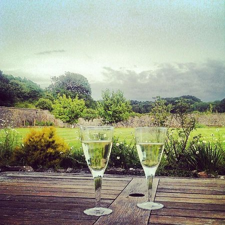 Elberry Farm Bed & Breakfast: Wine on a lovely evening in the unspoilt garden