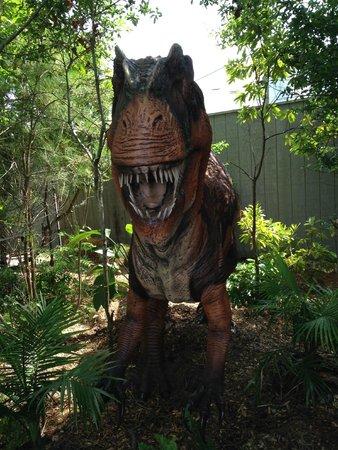 North Carolina Aquarium at Pine Knoll Shores: Touring Animatronic Dinosaur Exhibit
