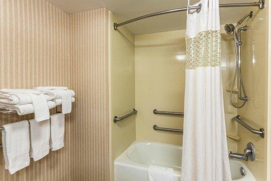 Hampton Inn & Suites Macon I-75 North: Accessible Bathroom