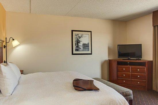 Hampton Inn & Suites Macon I-75 North: King Suite