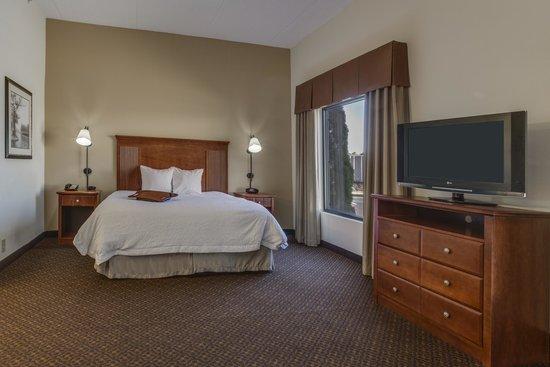 Hampton Inn & Suites Macon I-75 North: King Room