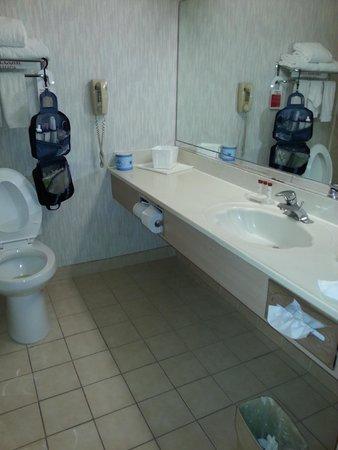 Ramada Limited Bakersfield North : Bathroom
