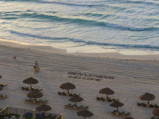 The Royal Islander: Playa