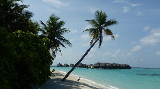 Kanuhura: Un paseito por la isla