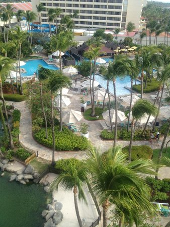 Hyatt Regency Aruba Resort and Casino: View of the pool from our room!
