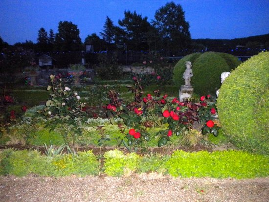 La Maison de l'Argentier du Roy : The gorgeous gardens….full of roses….topiary….