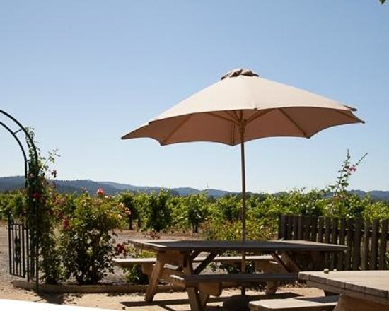 Foppiano Vineyard : Back picnic area