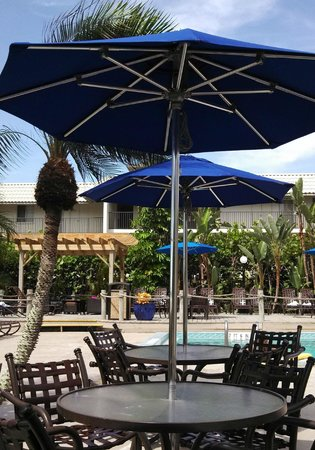 Holiday Inn Sanibel Island: Tiki Bar