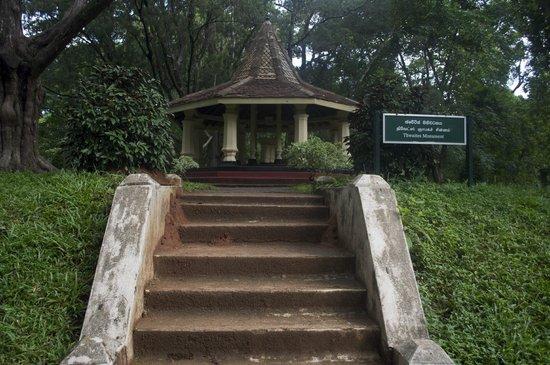 Rainbow Tours Sri Lanka: Botanical Gardens