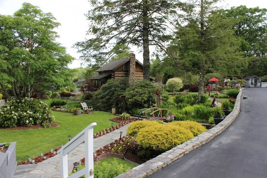 Azalea Garden Inn : The cabin