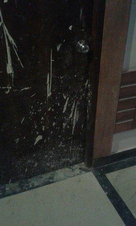 Usha Kiran Palace Hotel & Tower: Puerta de enfrente