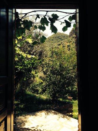 Sirince'm Sakli Vadi: View from my room at Sakli Vadi Sirince-Izmir-Turkey.Spectacular!! Tel: 0 533 249 58 42 or 0 23