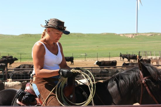 Colorado Cattle Company : Learning to rope