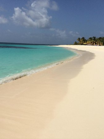 Sonesta Great Bay Beach Resort, Casino & Spa: shoal bay beach anguilla (best beach i ever been to)