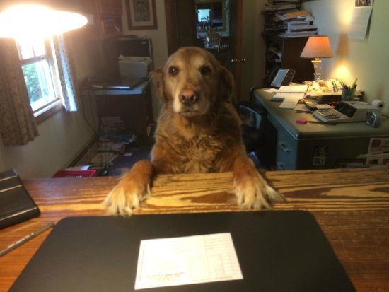 The Aspen at Manchester: Just one of the many friendly staffers.