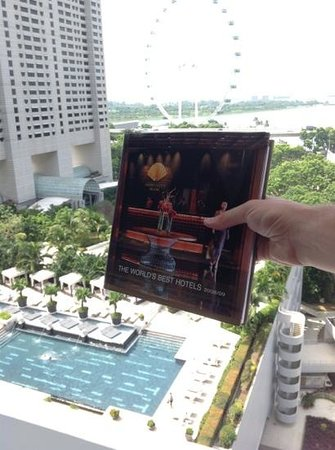 Mandarin Oriental, Singapore: mandarin oriental singapore certainly deserves to be in this book