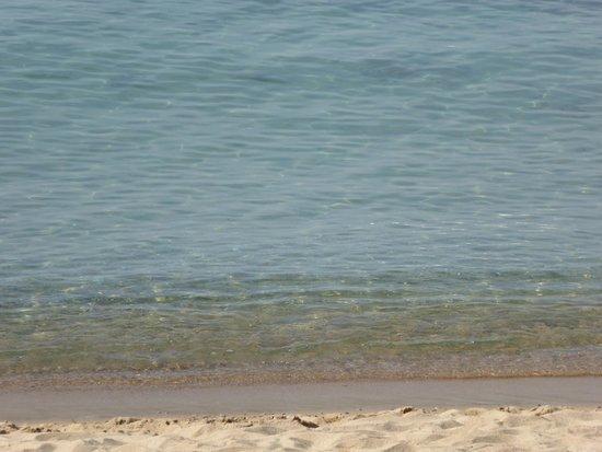 Midi Plage : Acqua limpida