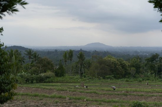 Amanjiwo Resorts: View from main terrace - Borobudur Temple in the distance
