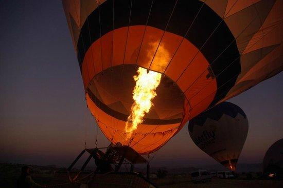 Butterfly Balloons : Subindo..