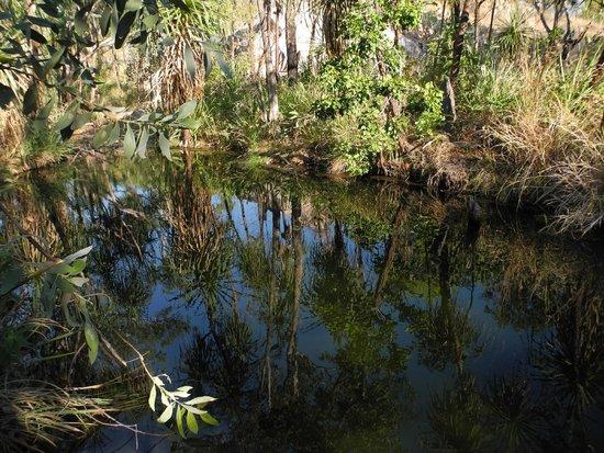 Lorella Springs Wilderness Park : what was the nudie hot springs