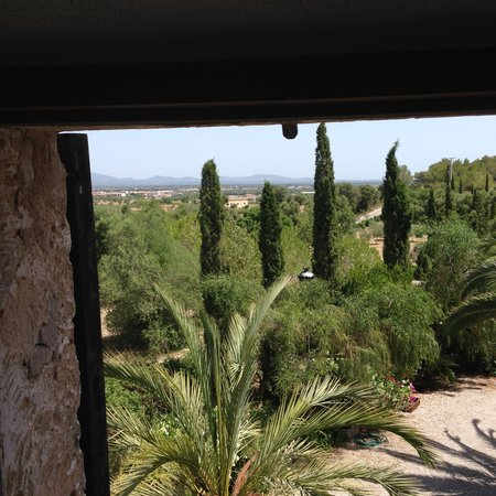 Finca Son Jorbo: View from Lila's bedroom