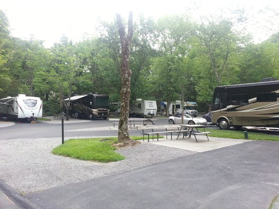 Twin Creek RV Resort: View of sites