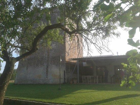 Torre del Cardo : La veranda del ristorante