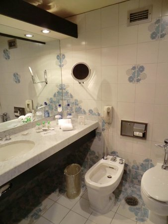 Plaza Hotel & Convention Center: Bathroom 1225