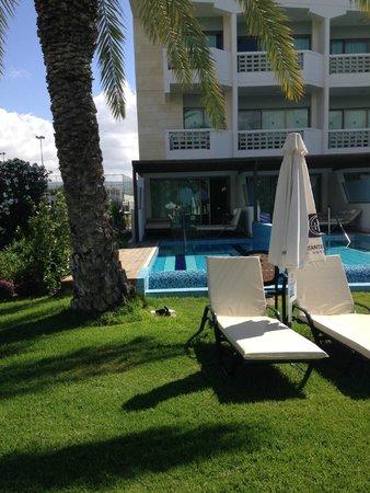 Constantinou Bros Athena Beach Hotel: private pool