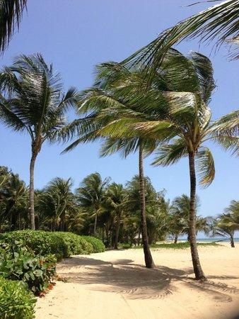 The St. Regis Bahia Beach Resort: tropical delight