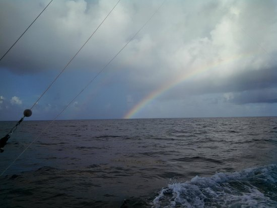 Cara Mia Fishing Charters: Fish or no fish, the views are magnificent!