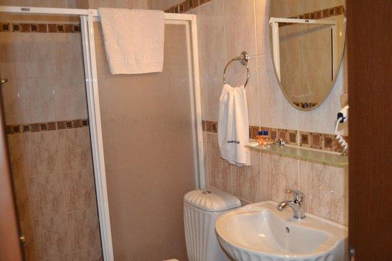 Hotel Tulip House: banyo