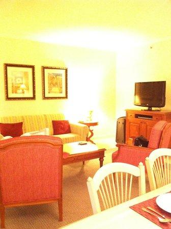 Marriott's Village d'lle-de-France: OUr living room